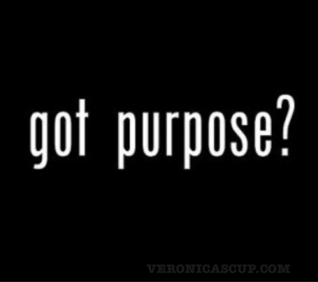 purpose pic